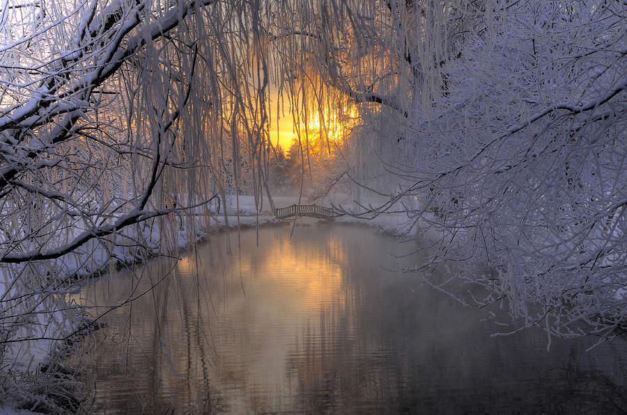 Snow Photograph - Frosty Morn 2 by Dan Myers