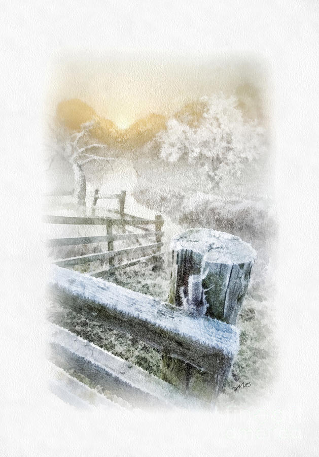 Winter Painting - Frosty Morning by Mo T