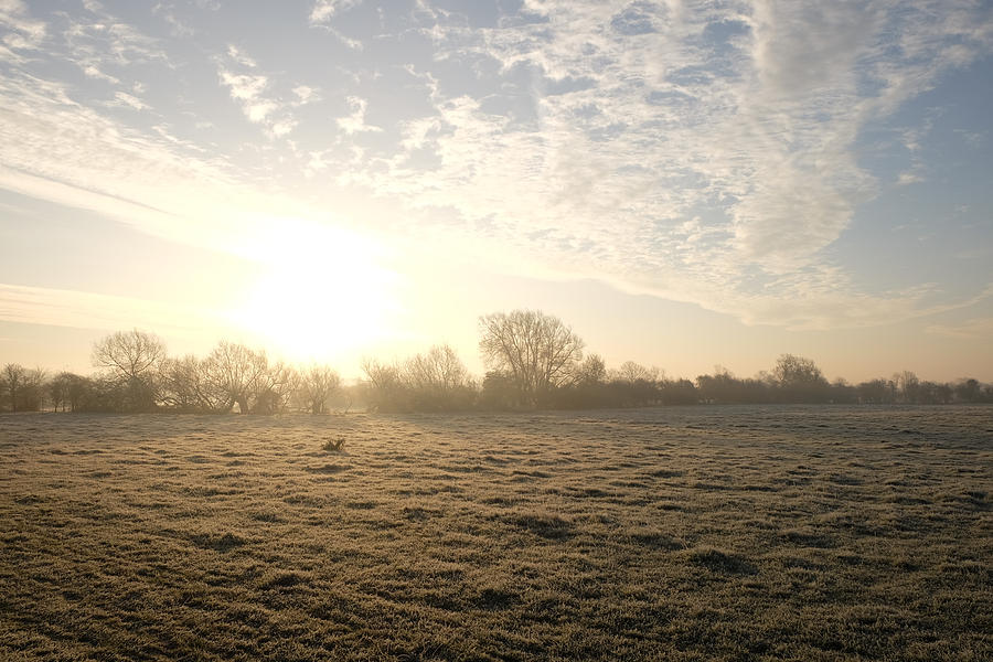 Fog Photograph - Frosty Sunrise by Mark Severn