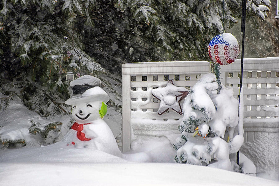 Holiday Card Photograph - Frosty The Snow Man by Thomas Woolworth
