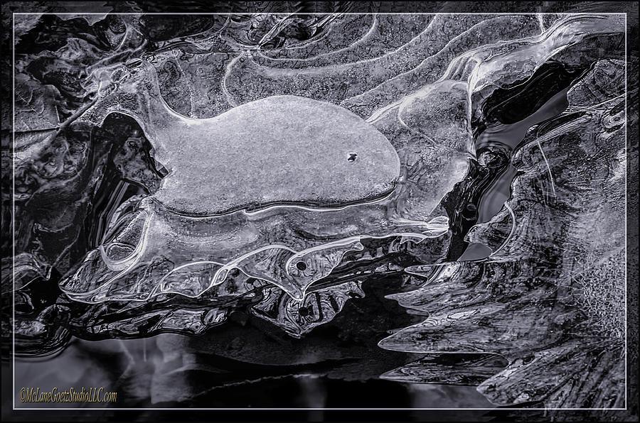 Landscapes Photograph - Frozen Beached Whale by LeeAnn McLaneGoetz McLaneGoetzStudioLLCcom
