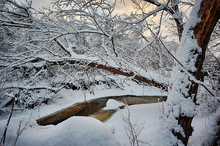 Clouds Photograph - Frozen Creek by Sebastian Musial
