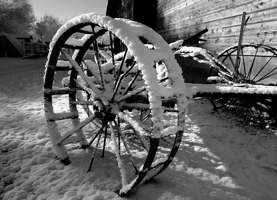 Black Photograph - Frozen In Time by Steven Milner