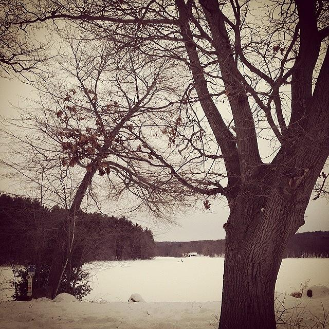 Frozen Lake Photograph by Erica Lubee