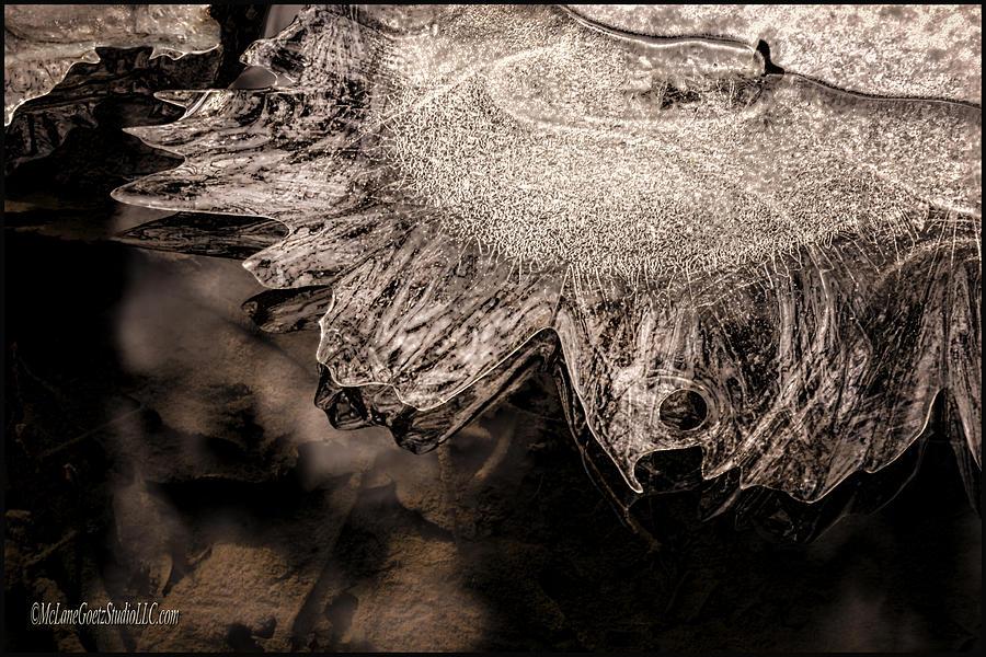 Landscapes Photograph - Frozen Sun by LeeAnn McLaneGoetz McLaneGoetzStudioLLCcom