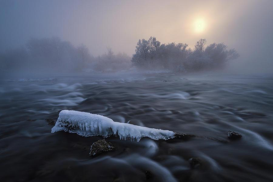 Sun Photograph - Frozen by Tom Meier