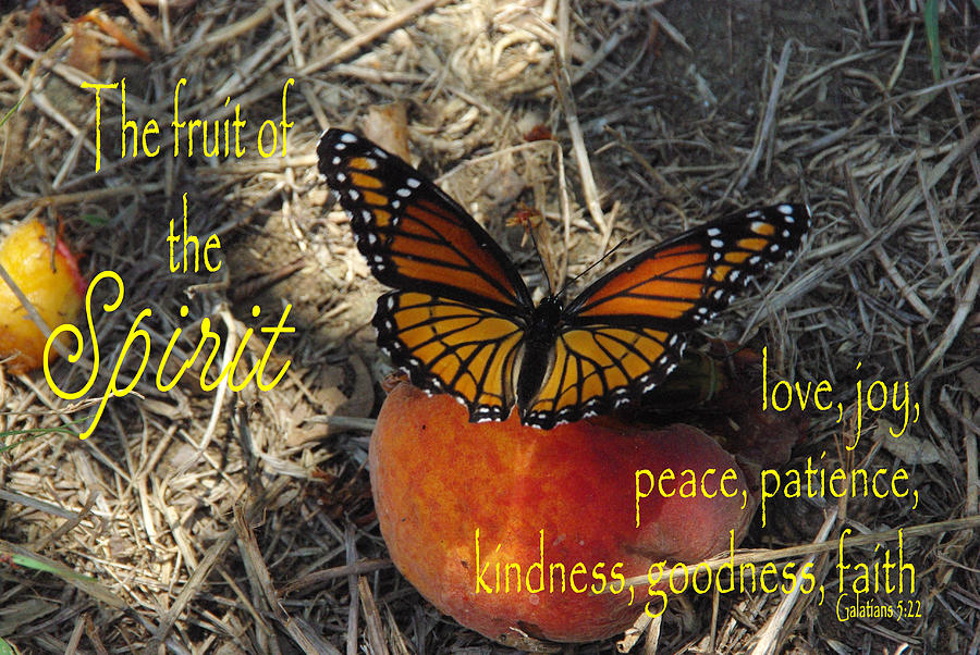 Catholic Photograph - Fruit Of The Spirit by Robyn Stacey