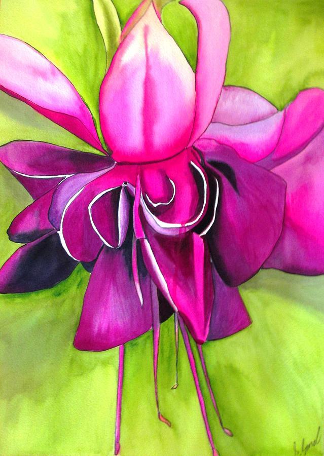Fuchsia Painting - Fuchsia Macro by Sacha Grossel