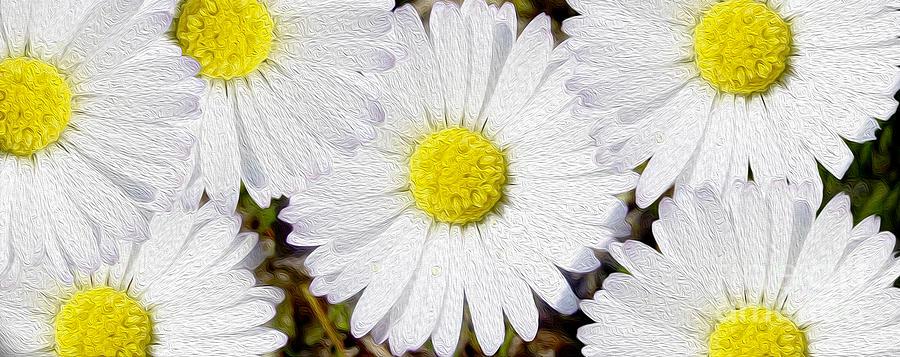 Daisies Mixed Media - Full Bloom by Jon Neidert