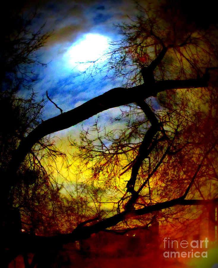 Full Moon Photograph - Full Crow Moon by Maria Scarfone
