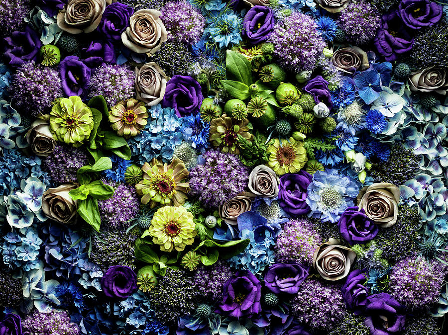 Full Frame Flowers Arrangement Photograph by Jonathan Knowles