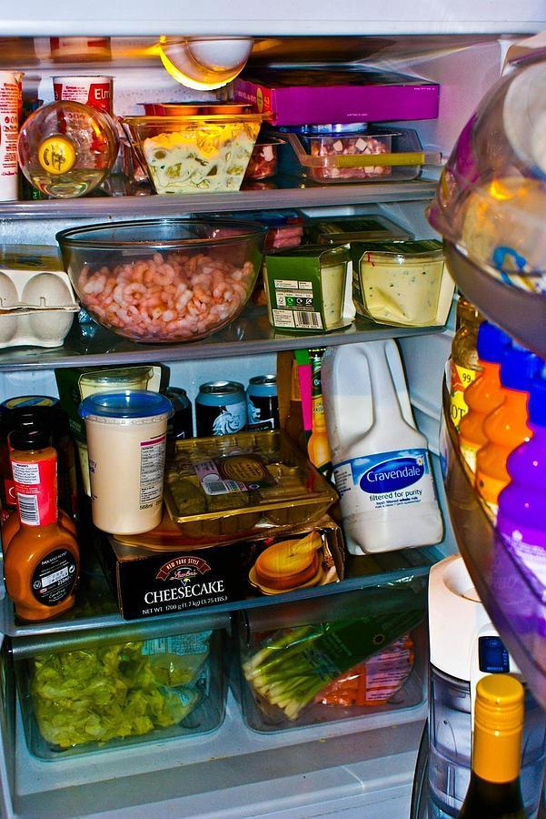 Resultado de imagen de full fridge