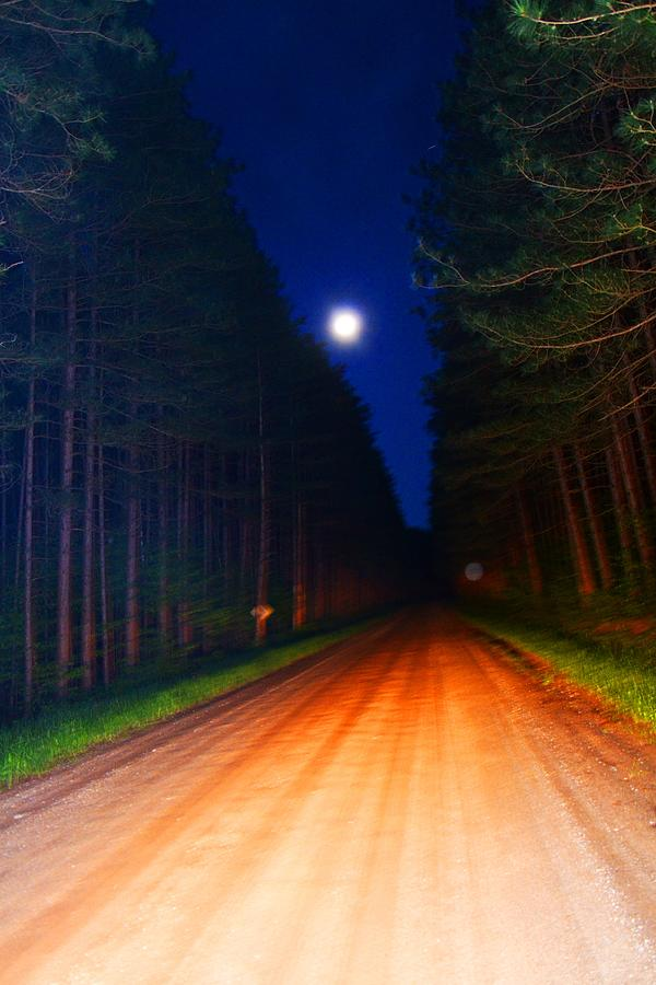 Full Moon Photograph - Full Moon In Forest by Valarie Davis