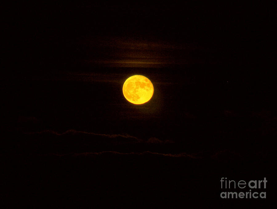 Full Moon Photograph - Full Moon by Kathy DesJardins