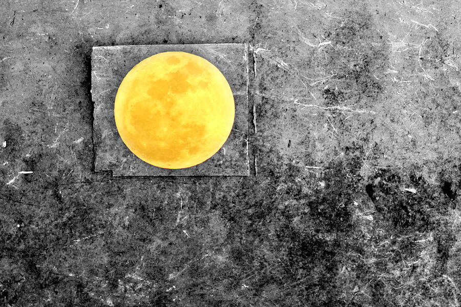 Full Moon Photograph - Full Moon by Rebecca Sherman