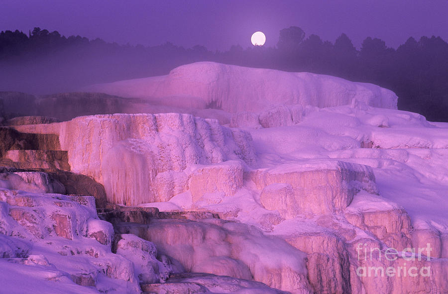 North America Photograph - Full Moon Sets Over Minerva Springs On A Winter Morning Yellowstone National Park by Dave Welling