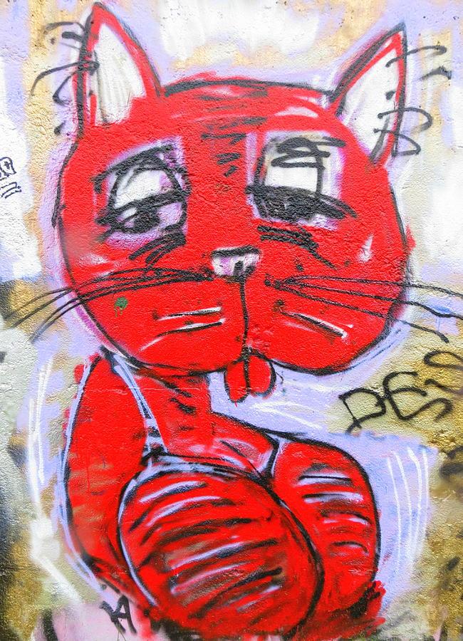 Cat Photograph - Funky Feline by Ramona Johnston