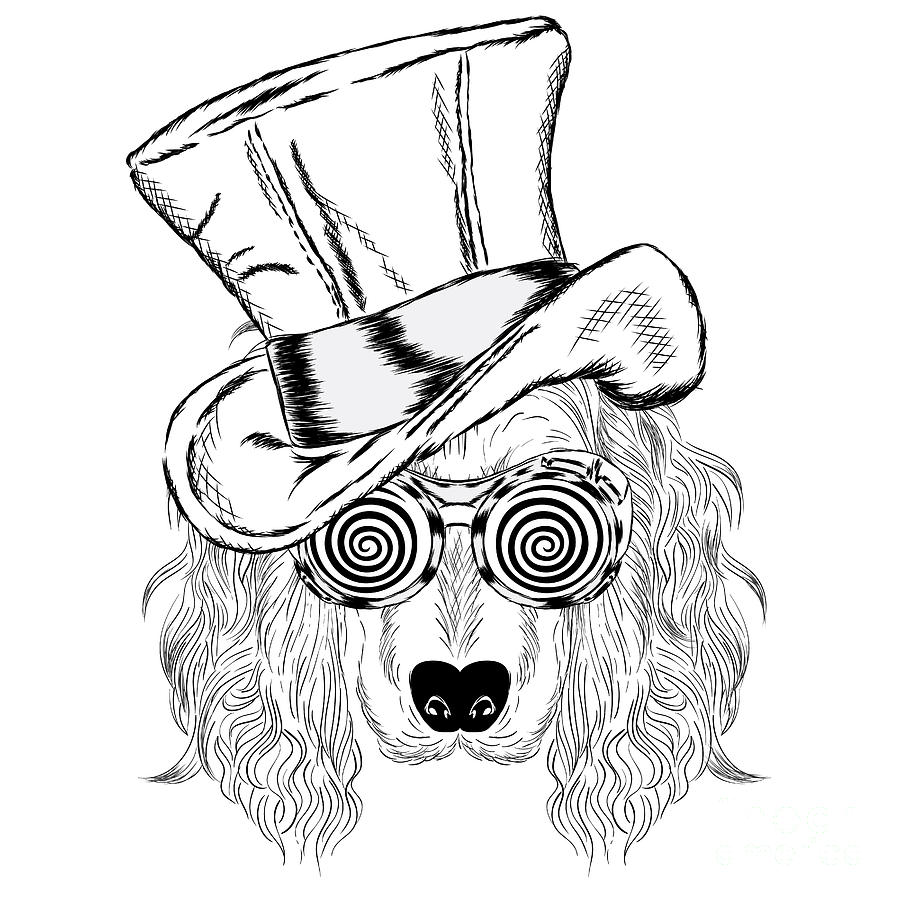 Magic Digital Art - Funny Dog In An Unusual Hat And by Vitaly Grin