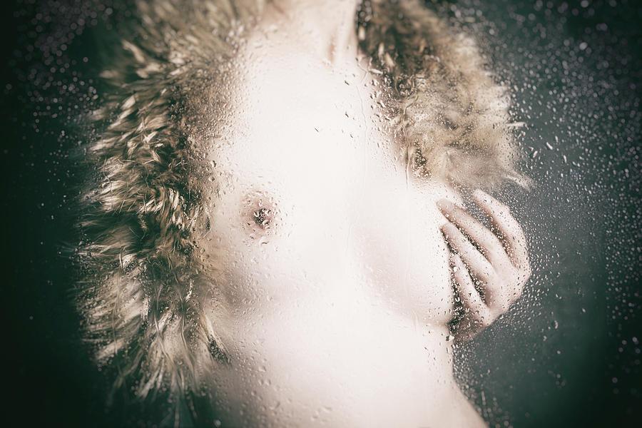 Studio Photograph - Fur by Daisuke Kiyota