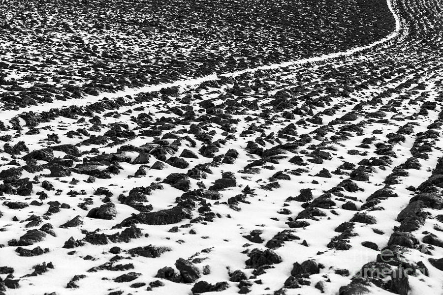 Snow Photograph - Furrowed by John Farnan