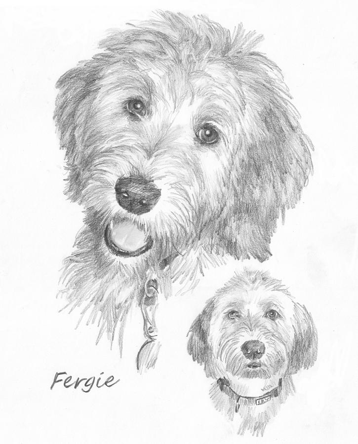 Furry Dog Friend Pencil Portrait Drawing by Mike Theuer