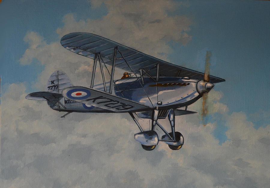 Airplanes Painting - Fury II Raf by Murray McLeod