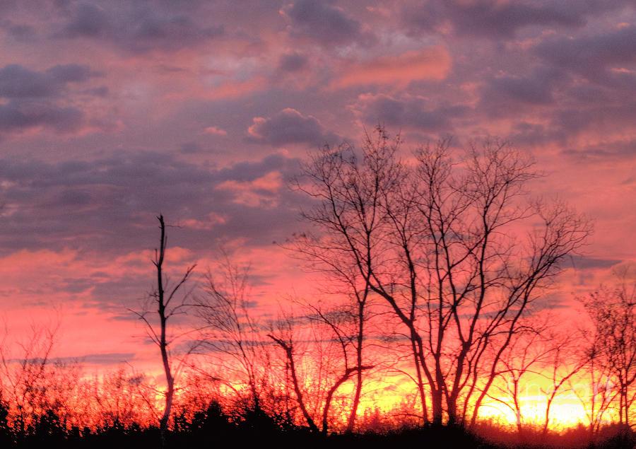 Illinois Photograph - Fuschia And Purple Sunset by Deborah Smolinske