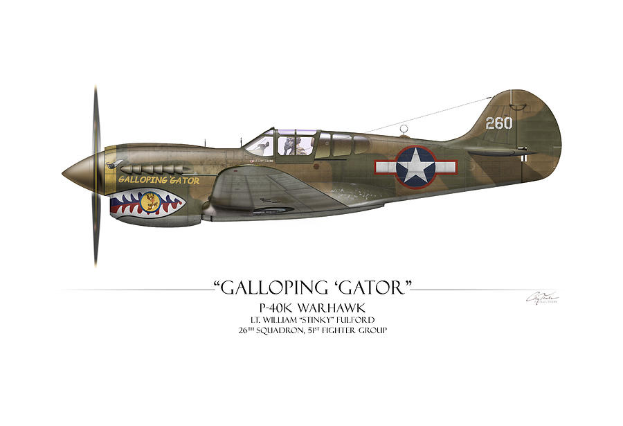 Aviation Digital Art - Galloping Gator P-40k Warhawk by Craig Tinder