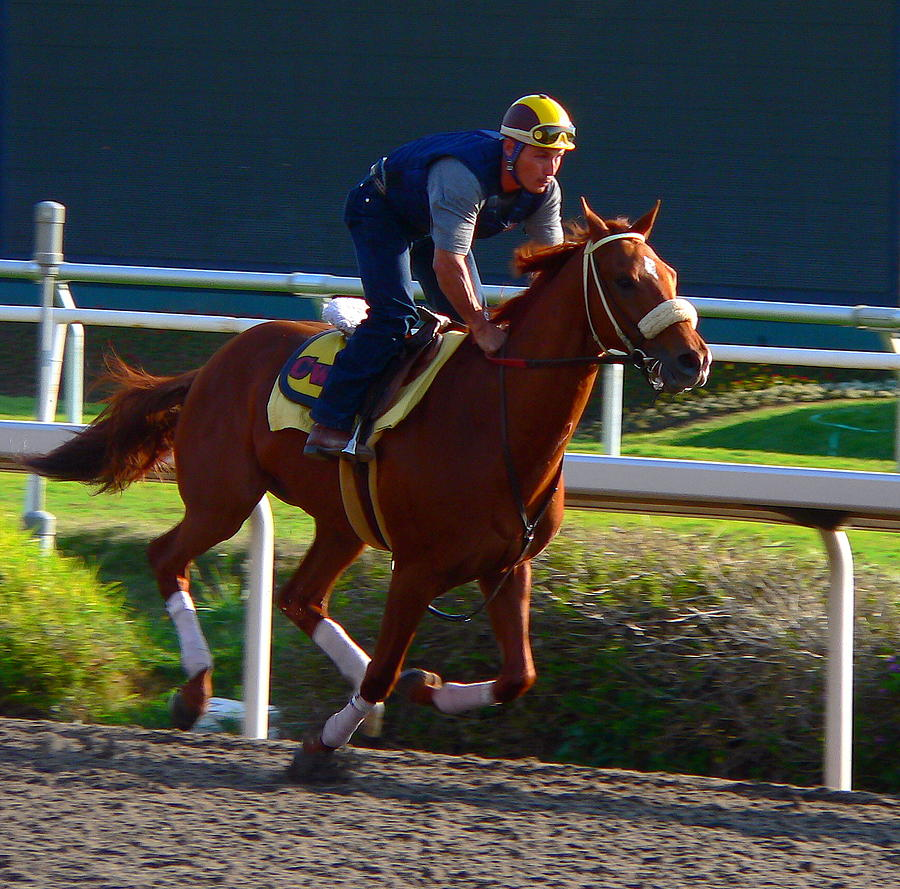Galloping Race Horse Photograph By Jeff Lowe