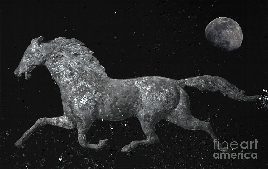 Weathervane Photograph - Galloping Through The Universe by John Stephens