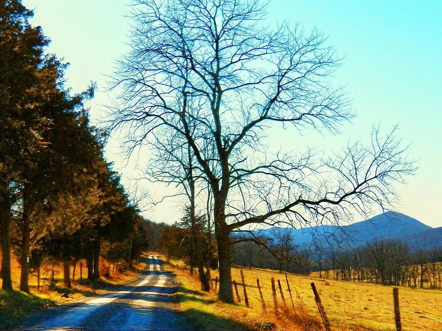 Blue Ridge Mountains Photograph - Gap Road by Joyce Kimble Smith