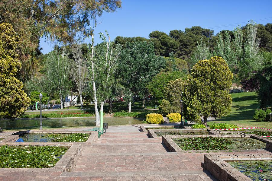 Barcelona Photograph - Garden At Montjuic In Barcelona by Artur Bogacki