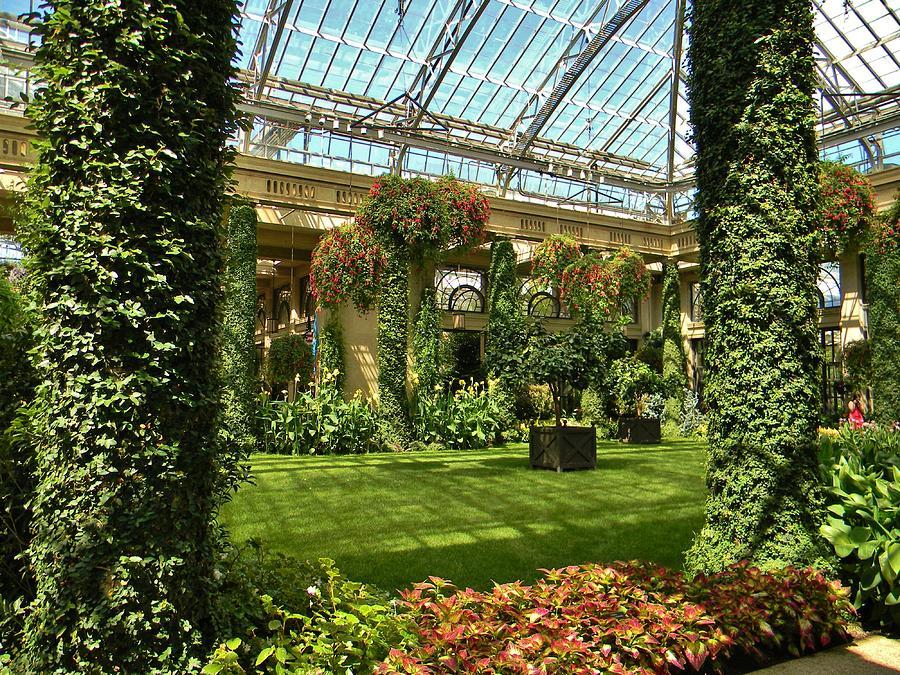 Garden Atrium In Shadow Photograph by Jean Goodwin Brooks
