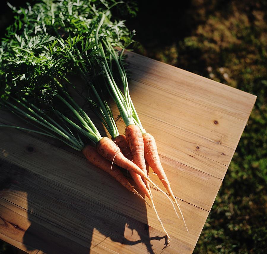 Garden Carrots On Sunny Stool Photograph by Danielle D. Hughson