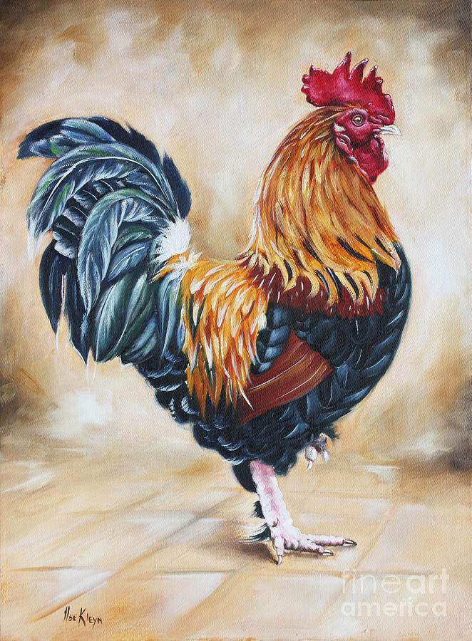 garden center s rooster painting by ilse kleyn