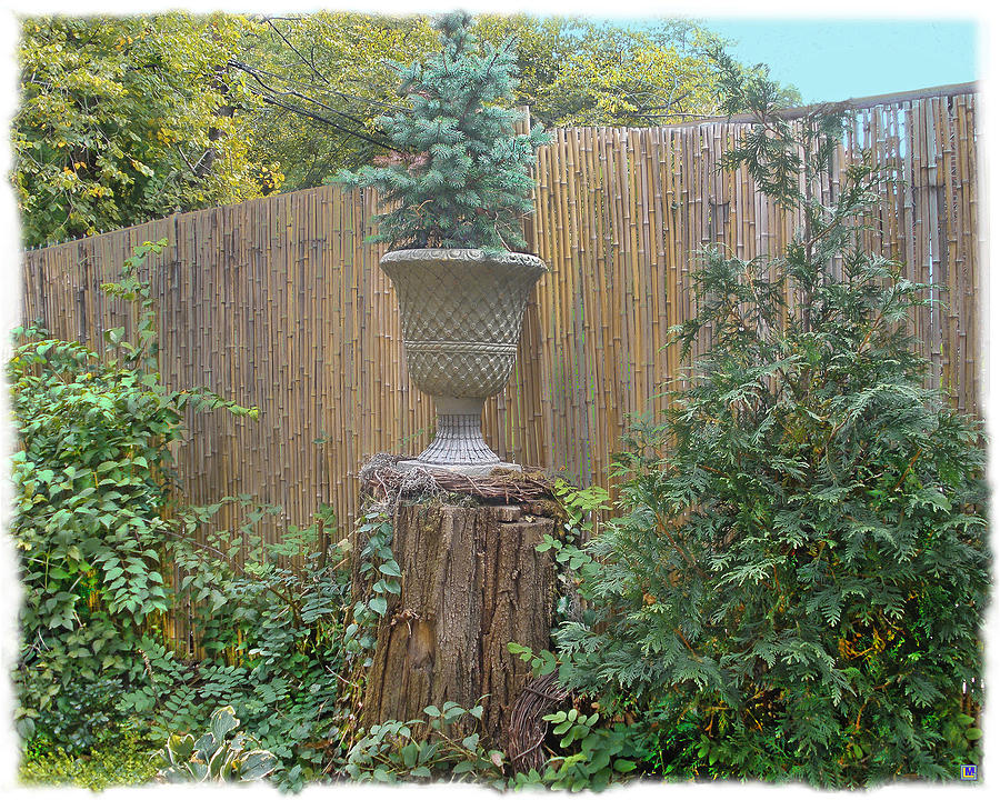 Bamboo Fence Photograph - Garden Decor 2 by Muriel Levison Goodwin