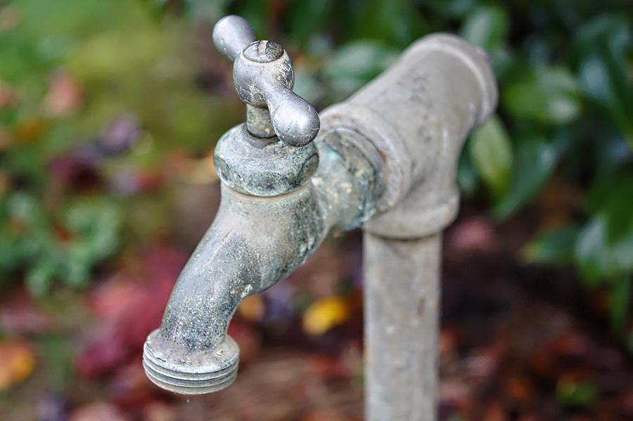 Faucet Photograph - Garden Faucet by Cathie Tyler
