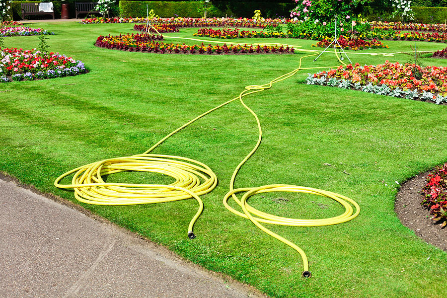 Bed Photograph - Garden Hosepipes by Tom Gowanlock