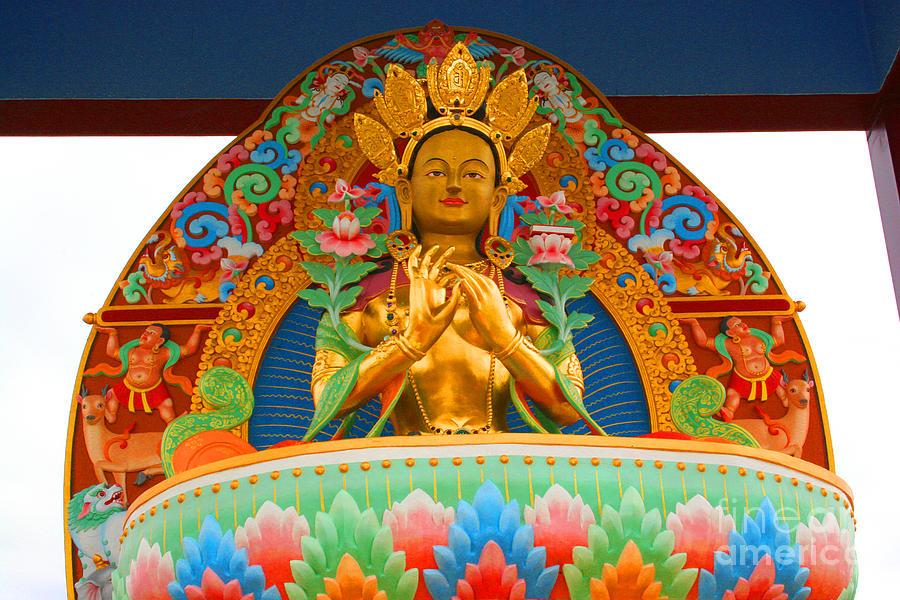 Garden of 1000 buddhas 1 photograph by h j levy Garden of one thousand buddhas