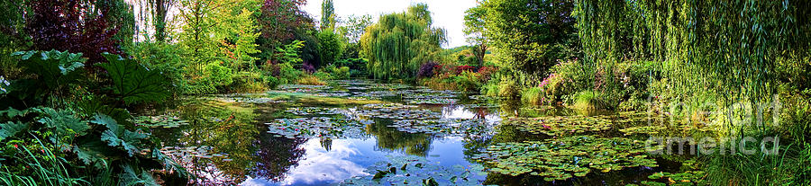 Monet Photograph - Garden of Dreams by Olivier Le Queinec