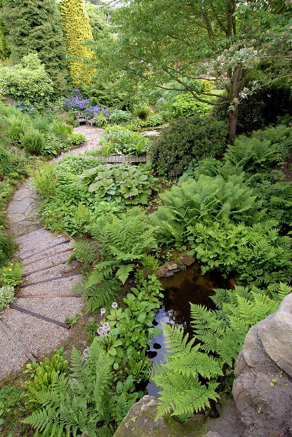 Garden Path Photograph By Bide A Wee Simon Fraser Science Photo