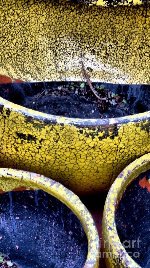 Garden Pots Photograph - Garden Pots by Claudette Bujold-Poirier