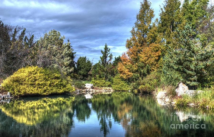 Garden Reflections by Terri Creasy
