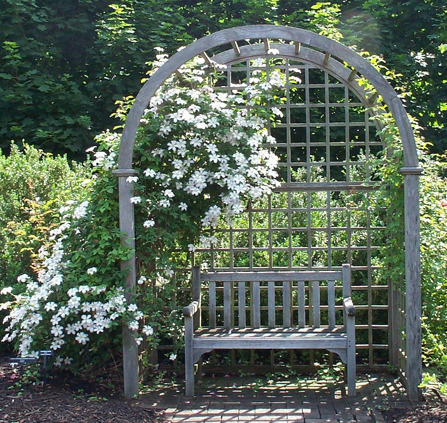 Garden Photograph - Garden Respite by Barbara McDevitt