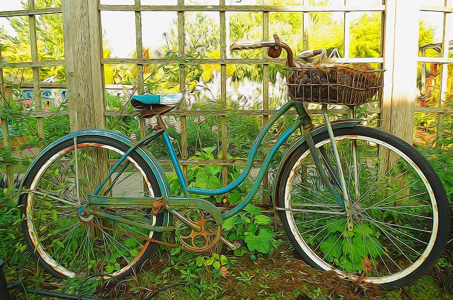 Garden Photograph - Garden Scene by Denise Darby
