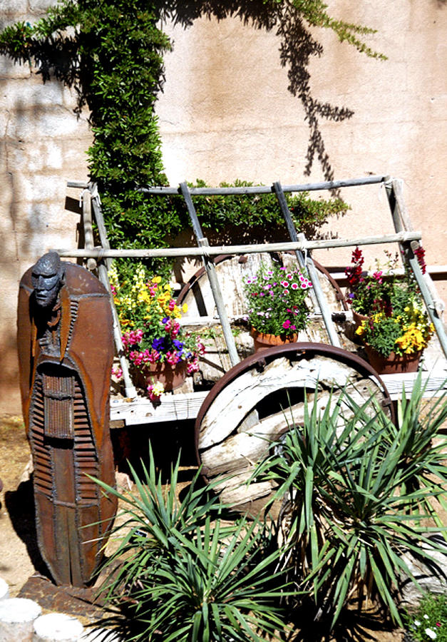 Garden Sentry 25920 Photograph
