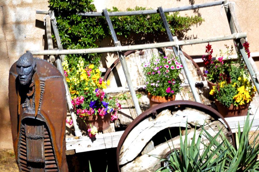 Garden Sentry 25922 2 Photograph