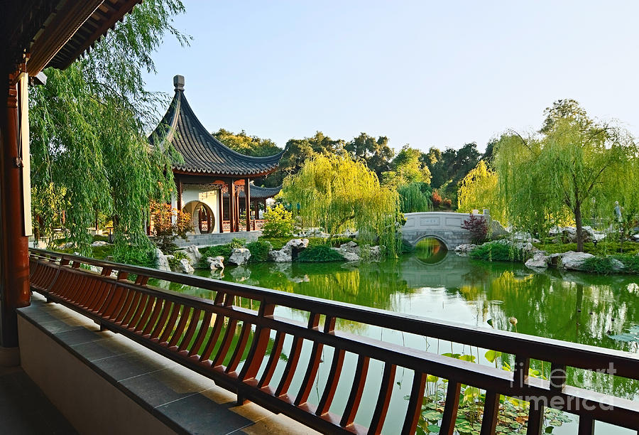 Garden Terrace Chinese Garden At The Huntington Library Photograph By Jamie Pham