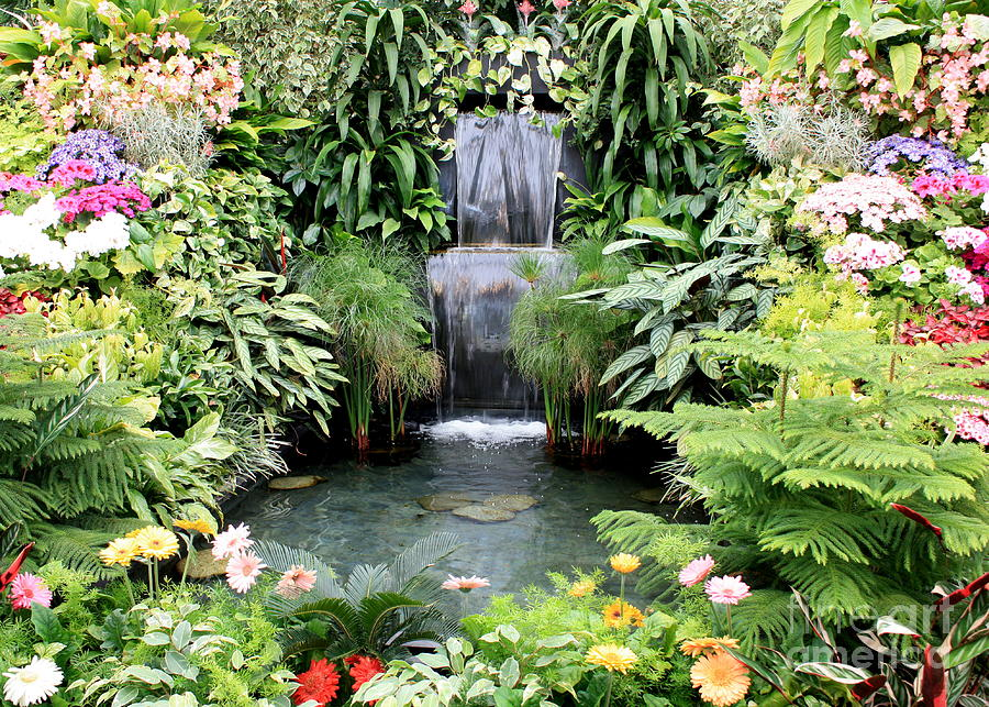 Garden Photograph   Garden Waterfall By Carol Groenen