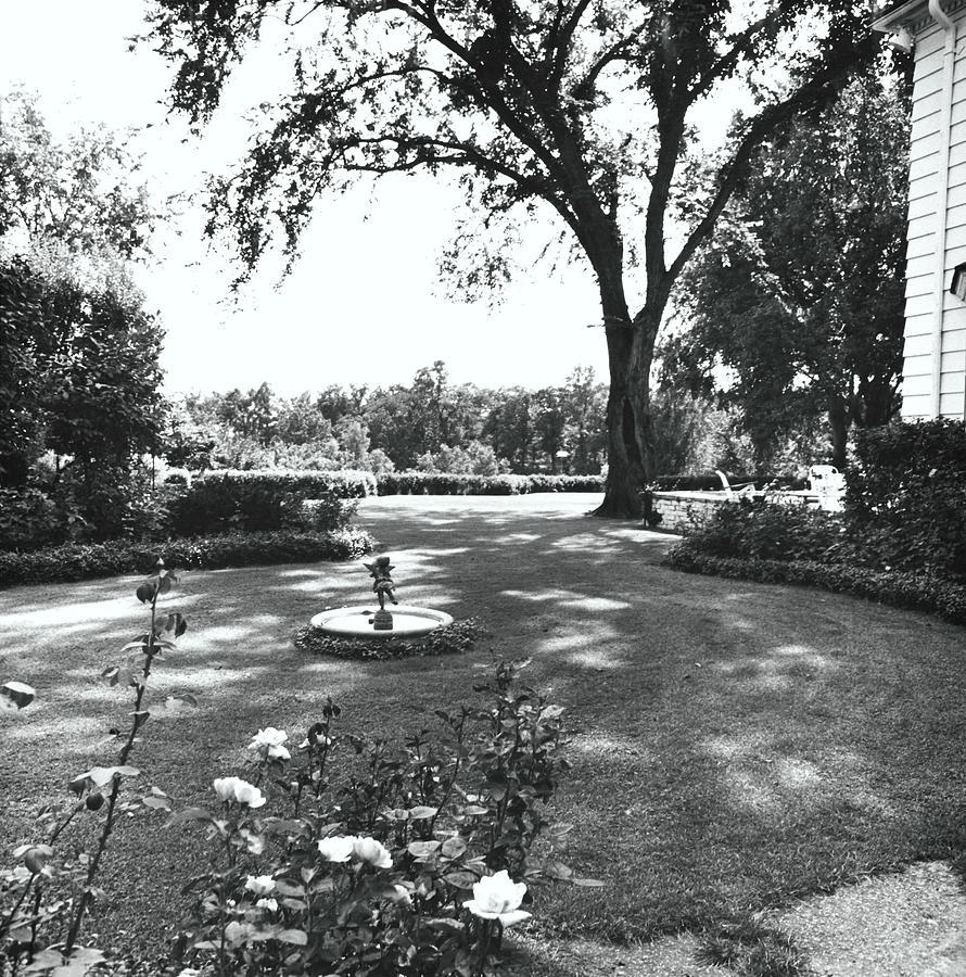 Garden With Fountain Photograph by Ralph Bailey